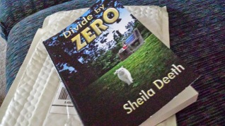 Divide by Zero, print proof