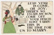 leap year proposal