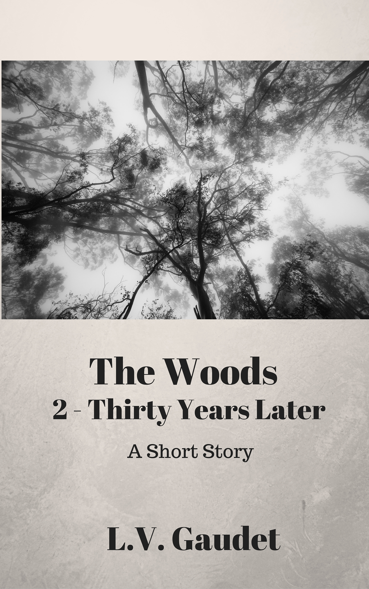 Short Story Indigo Sea Press Blog Faze 3 Fuse Box Handle The Woods 2 Thirty Years Later By Lv Gaudet