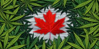 Canada and Marijuana